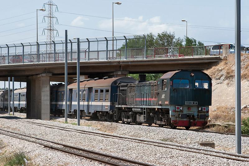 040-DK-97 Lychee Rades 3/8/2010<br /> 167 1225 Tunis Ville-Erriadh