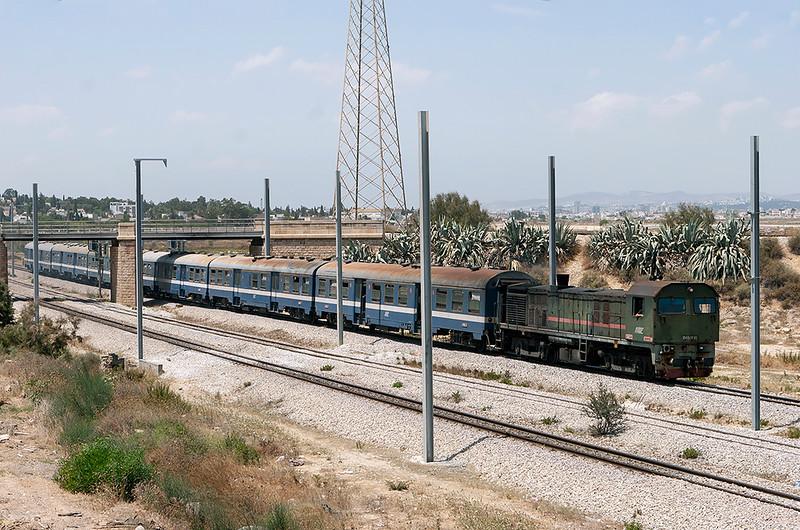 040-DK-90 Lychee Rades 3/8/2010<br /> 165 1210 Tunis Ville-Erriadh