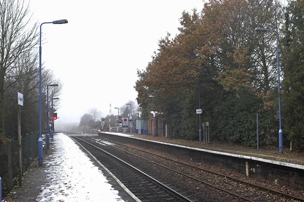 Westerfield 6/12/2010