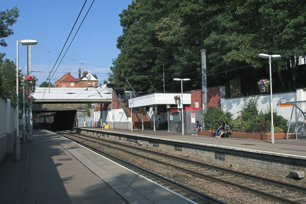 Hampstead Heath 24/7/2010