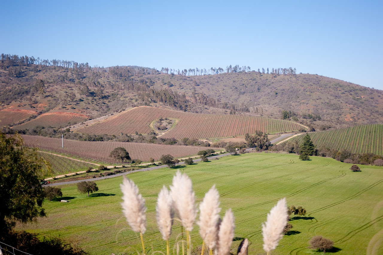 Enroute to Valparaiso, we were in the wine region of Chile