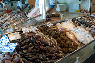 Exotic sea food options at Mercado Central