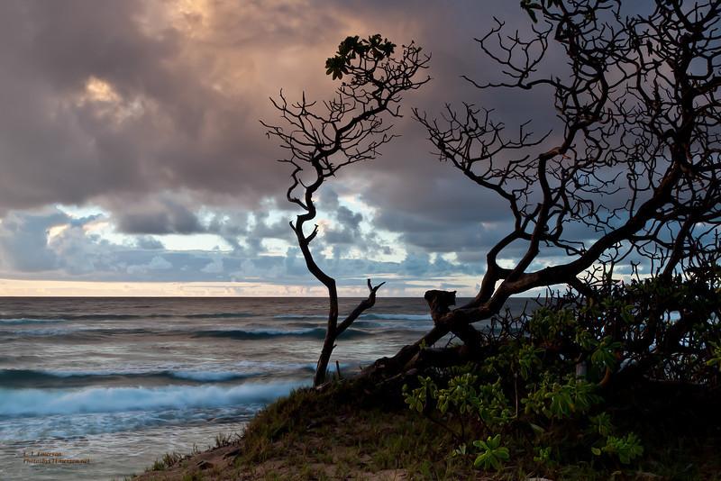 Hawaii, Kauai, East Shore Beach