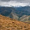Ben Lomond Saddle View