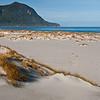 Martins Bay Sand Dunes
