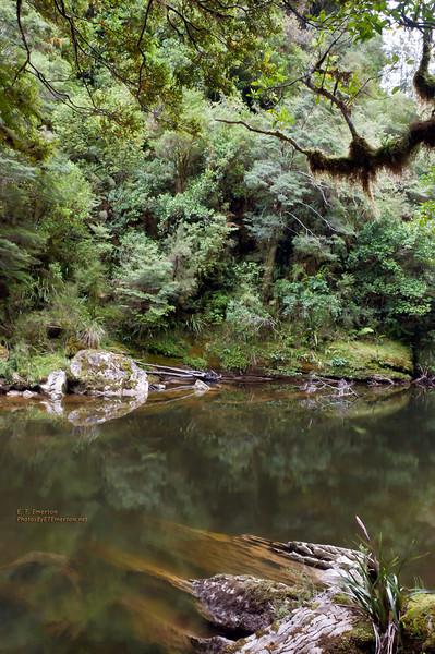 Pororari River