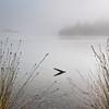 Misty Lake Alabaster