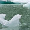 Hooker Lake Ice