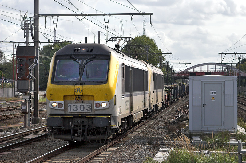 1303 and 1342, Kontich 7/10/2011
