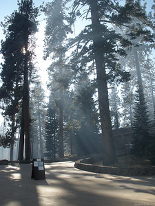 The smoke made for some nice sunlight effects but made it tough to hang around and breathe.  Fortunately, wind was nonexistent, so smoke did not interfere with our views farther into the park.