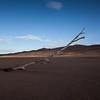 No Life<br /> Great Sand Dunes National Park & Preserve, Colorado, USA