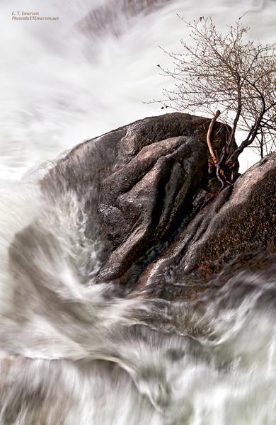 Tamarack Creek Cascades