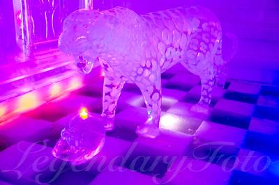 Ice Leopard