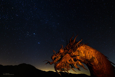 Dragon in Night Sky