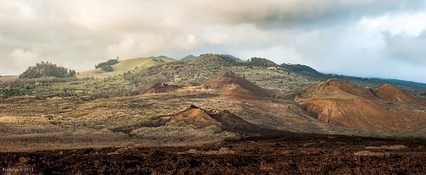 La Perouse Bay area - one of the last areas of eruption from the side of Haleakala, now dated to sometime in the 17th century.