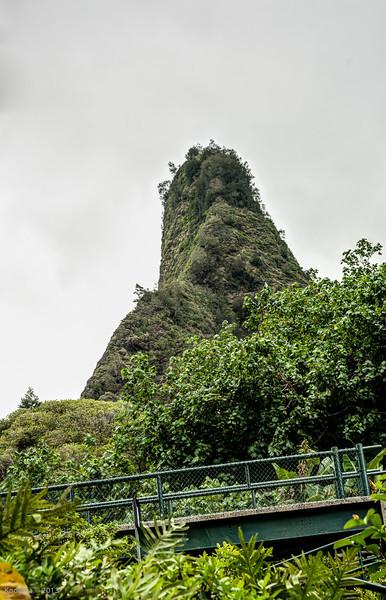 May-Maui