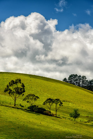 Northlands - Matauri
