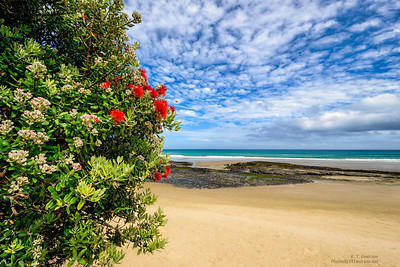 Northlands - Ahipara Beach