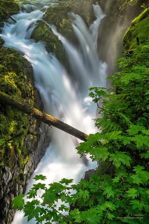 Sol Duc Falls, WA