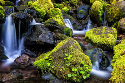 Moss-Covered Rocks and Cascades