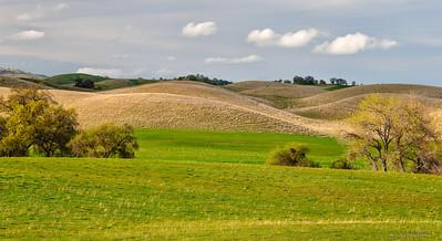 Yolo County Hillsides