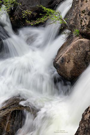 Cascade Creek