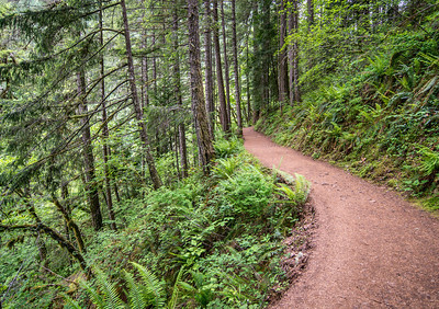 Eagle Creek Trail No. 440