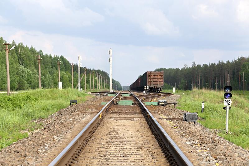Menta 'Station', Latvia 5/6/2014