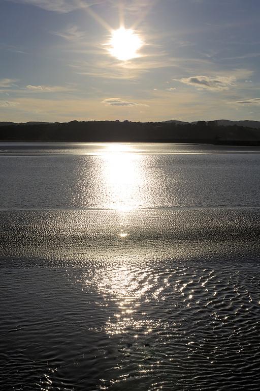 Kent Estuary, Arnside, Cumbria 16/6/2014