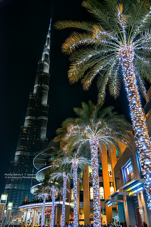 Dubai's Highlights