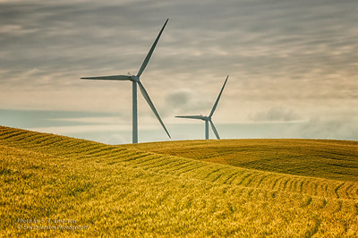 Montezuma Hills and Wind Turbines