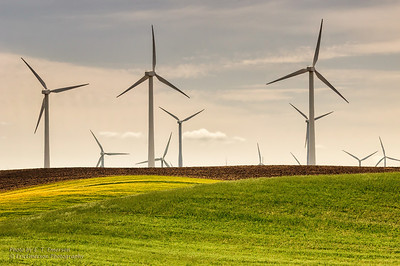 Montezuma Hills and Wind Turbines