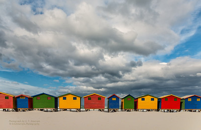 South Africa - Cape Peninsula