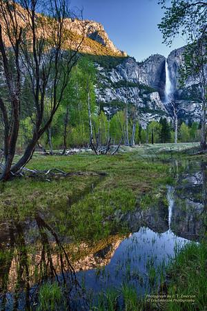 Yosemite Spring 2014 Visit