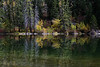 Reflections on Lizard Lake outside Marble Colorado