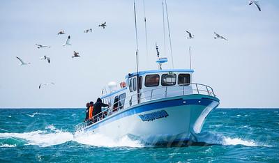 Fishing boat Kahuna