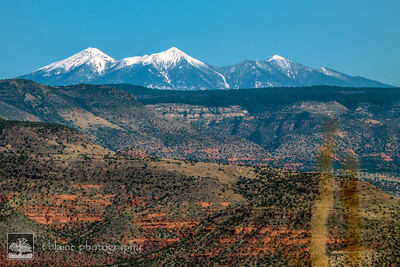 The View From Jerome...