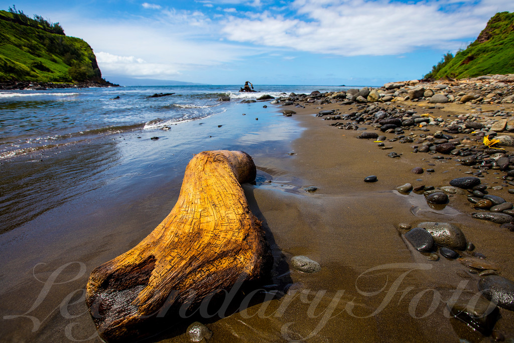 Picture of Driftwood behind the Little Grass Shack