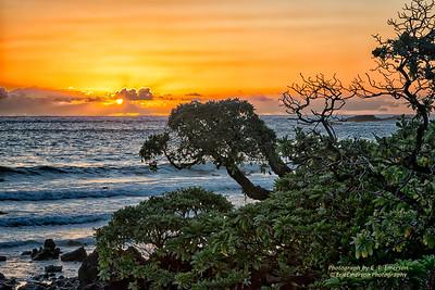 Koki Beach #5