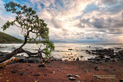 Koki Beach #4