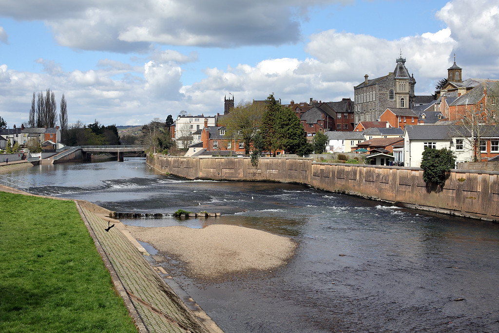 River Exe, Tiverton, Devon 16/4/2016