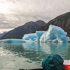 Our first close encounter with ice bergs