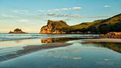 Coromandel's Hahei Beach