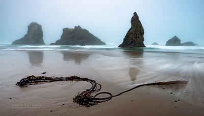 Bandon's Facerock Beach