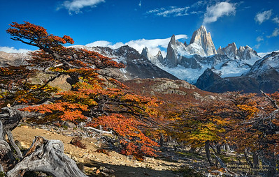 Fitz Roy and Fall Color