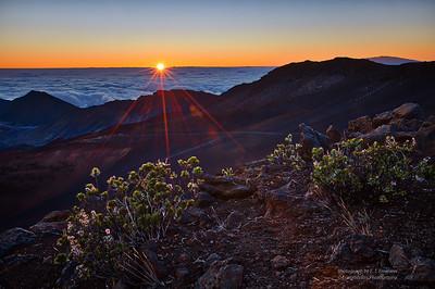 Hakeakala Sunrise