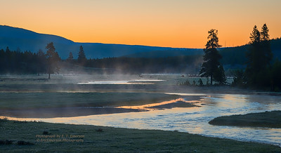 Gibbon River at Sunrise