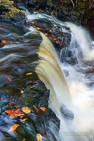 PRNL - Chapel Falls
