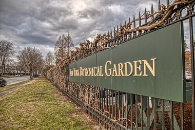 NYC Botanical Gardens 2018