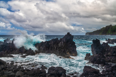 Hawaii's Laupahoehoe Point